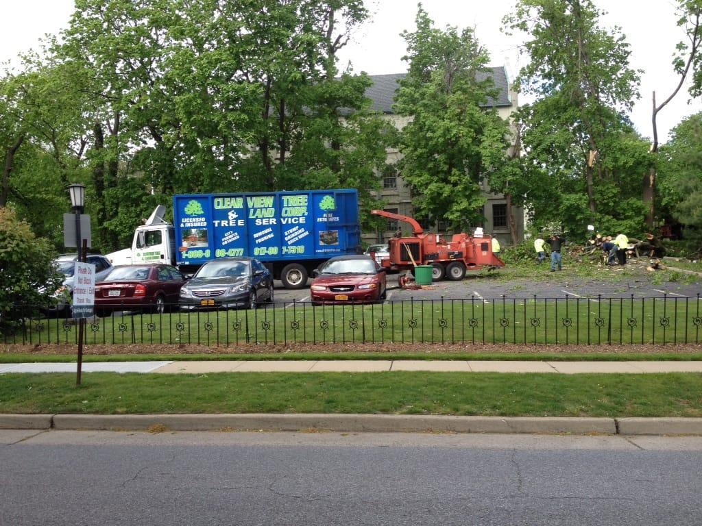 Queens ny tree service