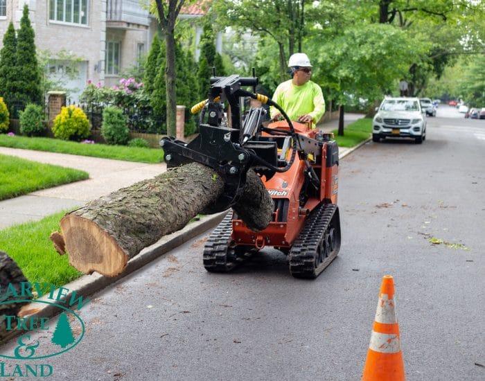 queens tree surgeon grabbing log with equipment